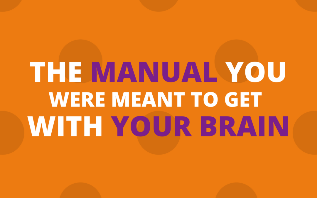 The Manual You Were Meant to Get With Your Brain49 min read